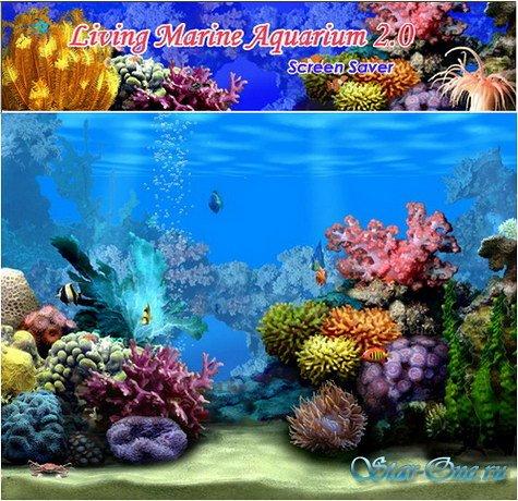 Living Marine Aquarium 2.0